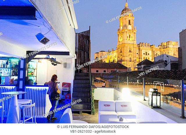 People at rooftop terrace bar with illuminated Cathedral in background. Malaga, Andalusia, Spain