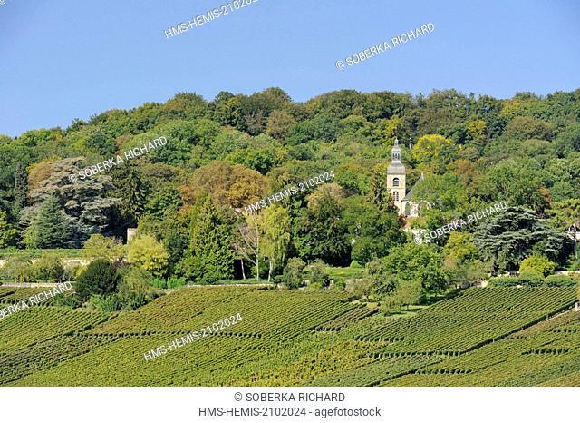 France, Marne, Hautvillers, vineyard and abbey