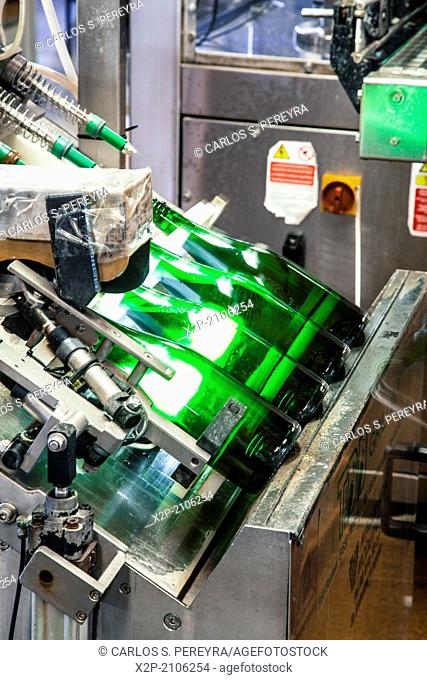 Wine and Cava bottling line. Winemaking in the largest wine region of Catalonia, the Penedes. Barcelona, Spain