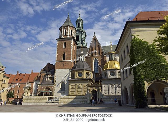 Wawel Cathedral, Krakow, Malopolska Province (Lesser Poland), Poland, Central Europe