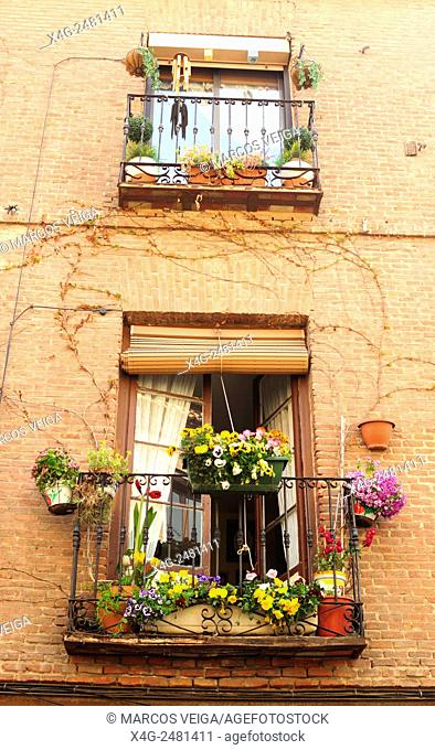 Windows. Alcala de Henares, Madrid