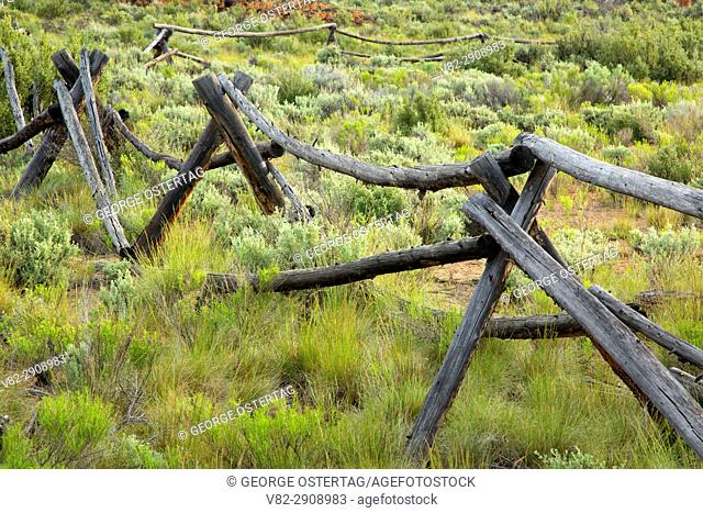 Pole fence near Cabin Lake, Deschutes National Forest, Oregon