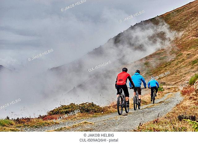 Three men mountain biking, Valais, Switzerland