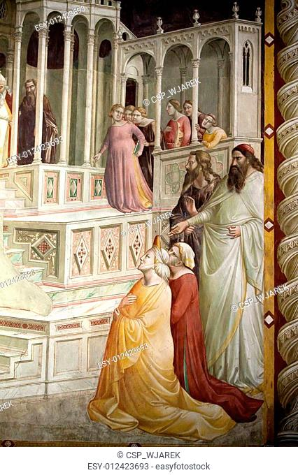 Florence - Santa Croce: Frescoes in the Baroncelli Chapel. Life of the Virgin