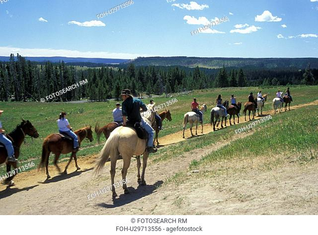 WY, Wyoming, Yellowstone National Park, Canyon Area, Trail Rides, horses, people