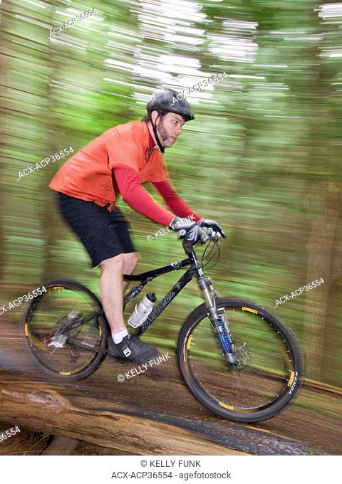 A male mountain biker descends a trail near Powell river on the upper Sunshine coast of the Vancouver coast and mountain region, British Columbia, Canada