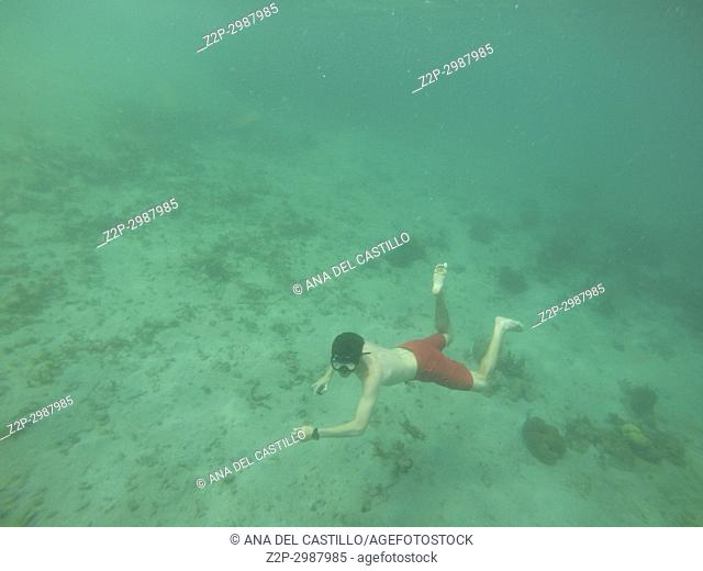 Boy snorkeling in Young Island, Saint Vincent And The Grenadines Antilles Caribbean sea
