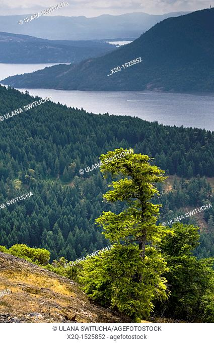View from Mount Erskine to Vancouver Island British Columbia Canada
