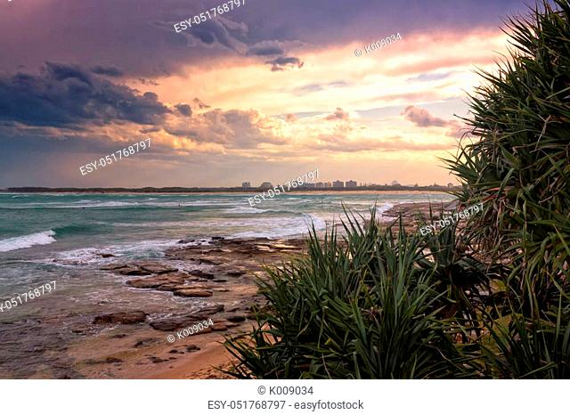 The pandanus trees are a very typical sight on the beaches of the Sunshine coast in Queensland, Australia. The sun sets beautifully over the waves of the...