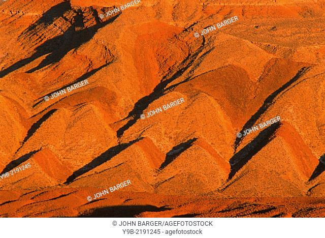 Raplee Ridge displays colorful, tilted layers called an anticline at sunset, near San Juan Valley, southeast Utah, USA