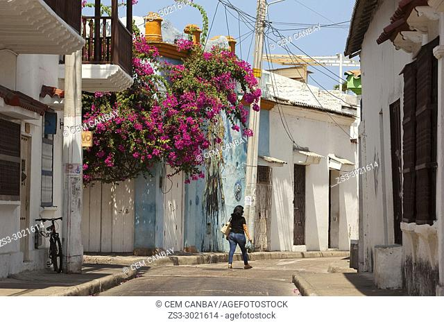 Woman walking in front of the colonial buildings covered with flowers at the historic center, Cartagena de Indias, Bolivar, Colombia, South America