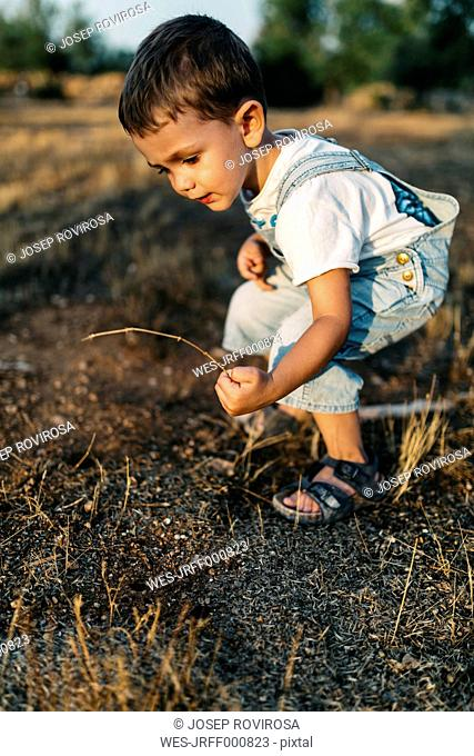 Little boy playing on a field
