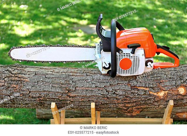 Petrol Chainsaw at Big Wood Log