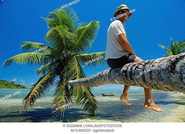 Tourist sitting on reclining palm tree, Ile Aux Nattes (Nosy Nato), Madagascar