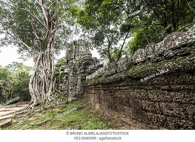 Wall of east gate of Ta som Temple in Angkor compound (Siem Reap Province, Cambodia)