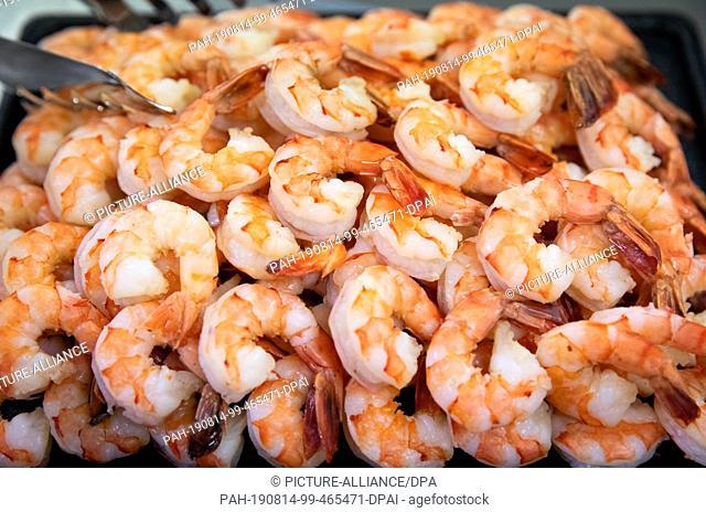 14 August 2019, Hamburg: Fresh shrimps lie in a bowl on a buffet at a wholesaler in the fish market Hamburg Altona. Photo: Christian Charisius/dpa