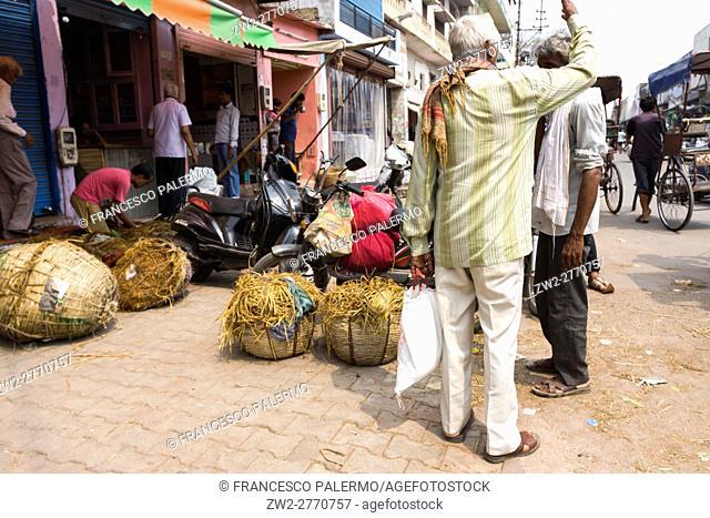 Street life in the city. Agra, Uttar Pradesh. India