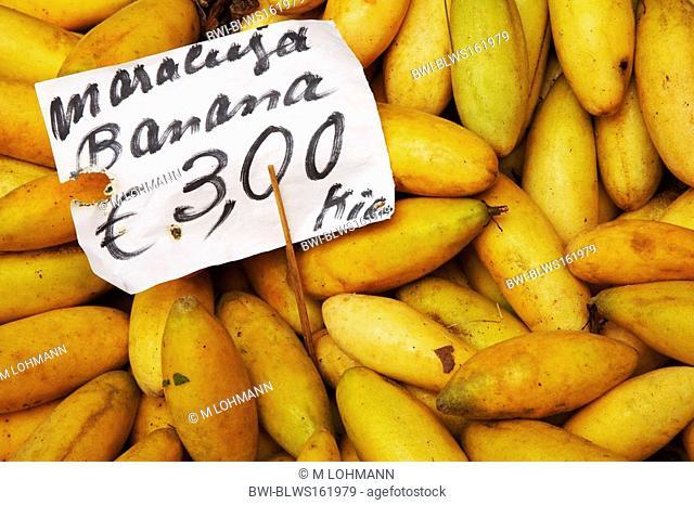 Banana passion fruit, granadilla, Curuba, Banana poka Passiflora mollissima, at the market: Maracuja bananas, Madeira, Funchal