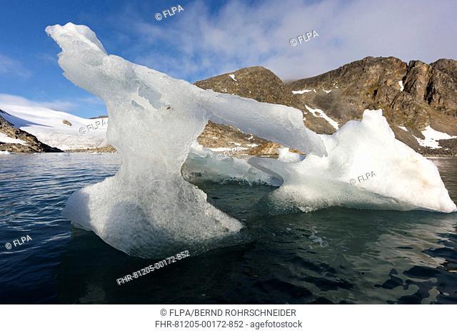 Melting glacial iceberg in fjord, Raudfjorden, Spitsbergen, Svalbard, August