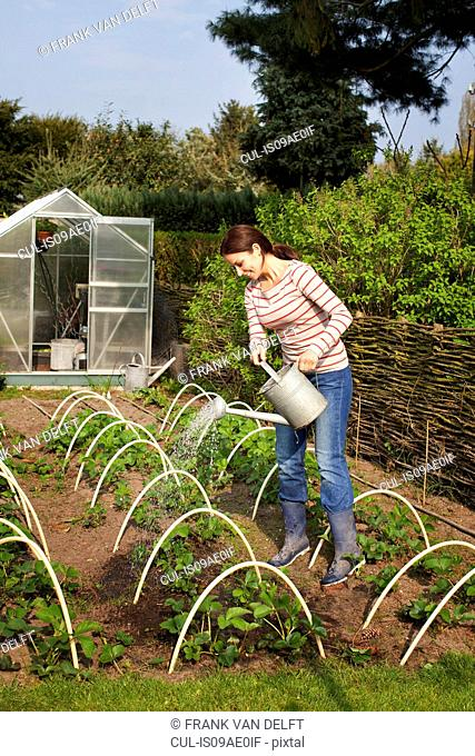 Young woman watering vegetables