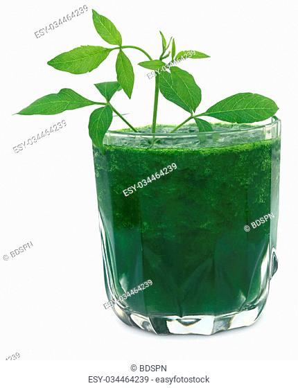 Vitex Negundo or Medicinal Nishinda leaves with juice in a glass
