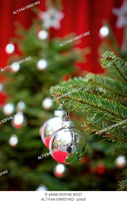 Ornaments hanging on christmas tree