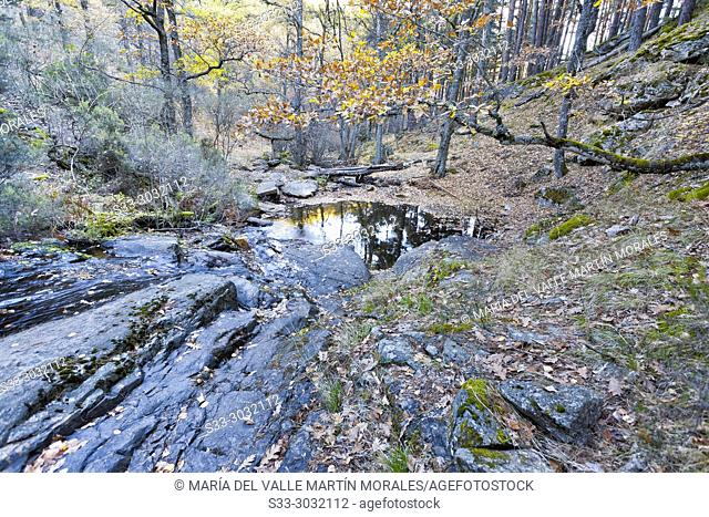 Fall at Sestil stream. Sierra de Gadarrama. Madrid. Spain