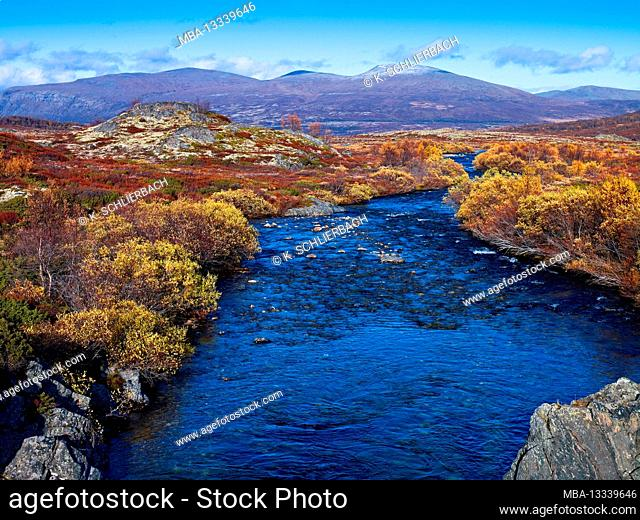 Europe, Norway, Oppland, Dovrefjell-Sunndalsfjella National Park, river in the autumn-colored Dovrefjell mountains