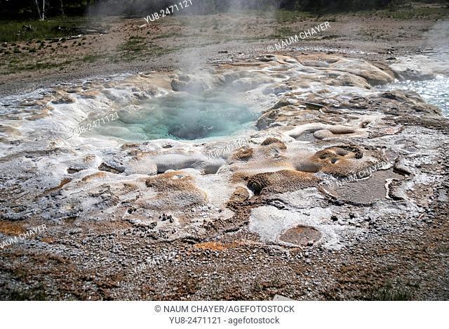 Hot spring, , Yellowstone National Park, Wyoming, USA