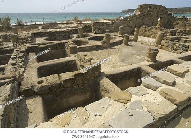Ruins of the salazon factory, Roman town of Baelo Claudia, Bolonia, archaeological site, II century, Tarifa, province of Cádiz, Andalucia, Spain