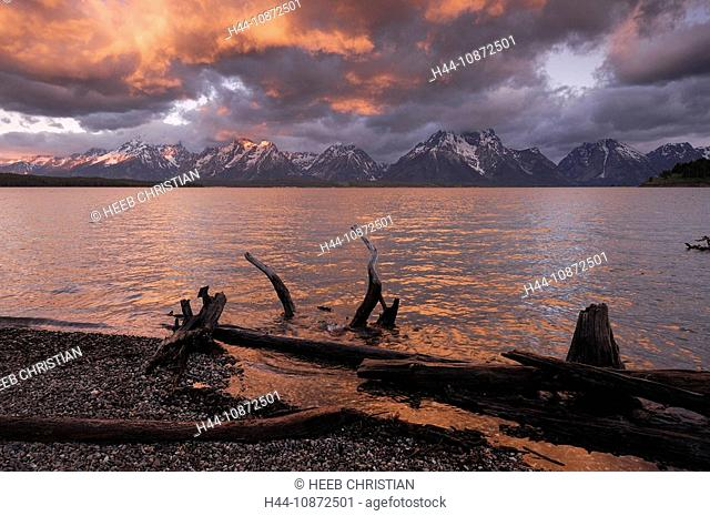 Dead tree branches at Jackson Lake, Sunrise, colorful clouds, Teton Mountain Range, Grand Teton National Park, Wyoming, USA