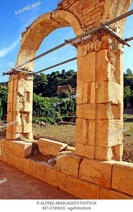 Remains of the cloister, Cartuja de Escaladei, La Morera de Montsant, Tarragona, Catalonia, Spain