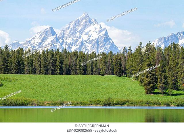 teton mountains grassy hill and still water