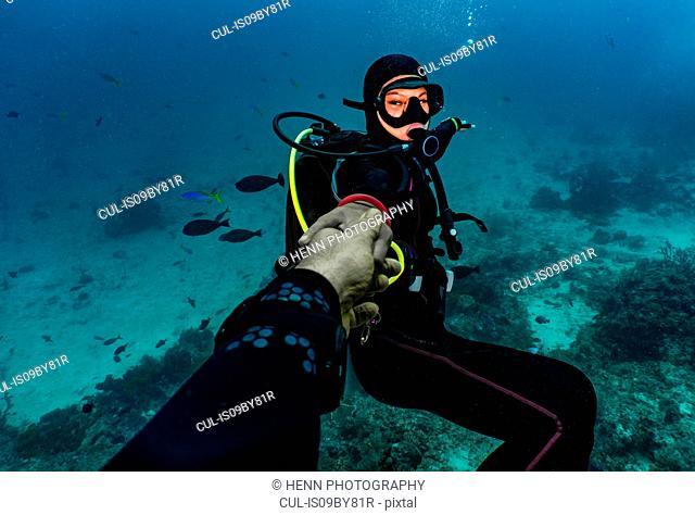Follow me, underwater personal perspective of diving in Raja Ampat, Sorong, Nusa Tenggara Barat, Indonesia