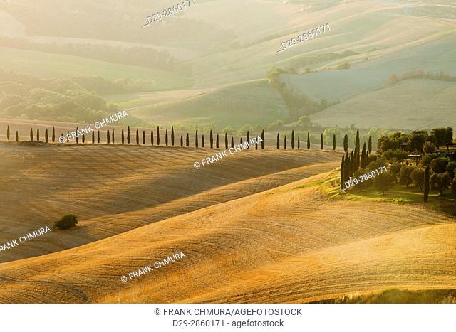 Italy, Tuscany, Crete Senesi - Rolling Hills, Dunes and Cypress Trees