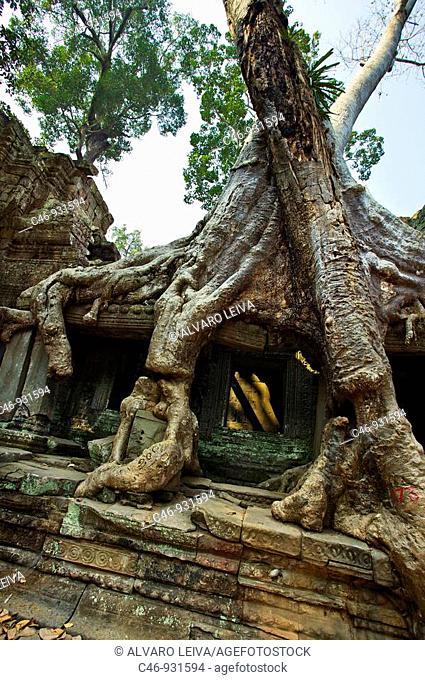 Ruins of Preah Khan temple. Complex of Angkor Wat. Angkor. Cambodia