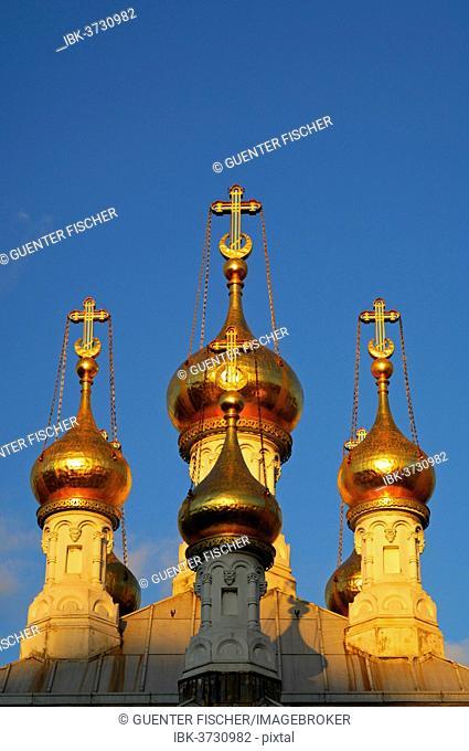 Gilded onion towers of the Russian Orthodox Church in Geneva in the evening light, Geneva, Canton of Geneva, Switzerland