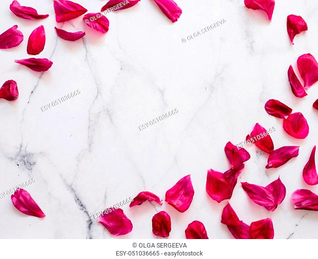 Red burgundy peony petals flat lay on white marble background. Flower petals with copy space for text or design in center
