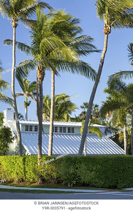 Palm trees surround historic cottage in Naples, Florida, USA