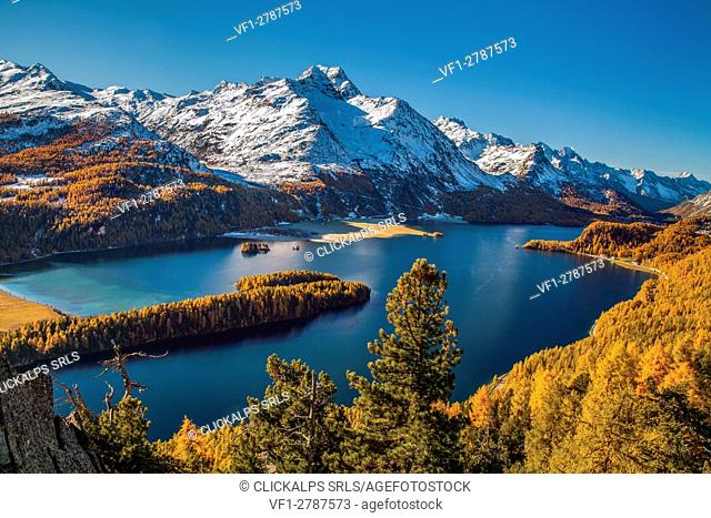Switzerland, Engadine, Sils lake, at Silvaplana lake, in autumn. Margna peak,snowy