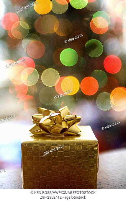 Gift with Christmas Tree behind