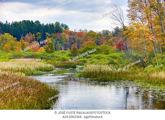 USA ,Massachusetts, Berkshire District