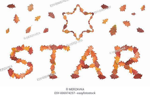 word star made of autumn leaves with David's star and leaves