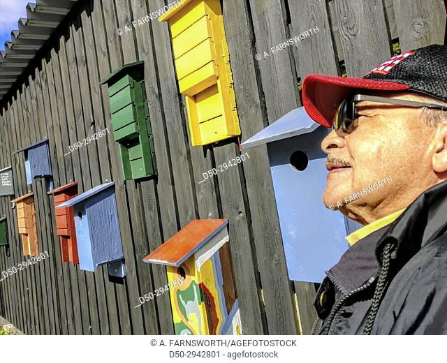 STOCKHOLM SWEDEN Portrait of man, 80 yrs old, with bird houses