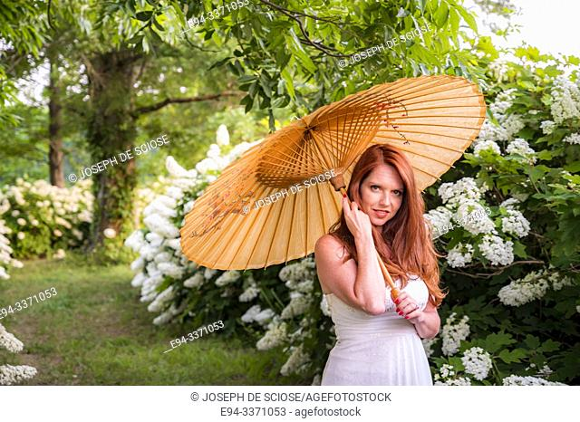 A beautiful 40 year old redheaded woman in a white dress holding a parasol in a hydrangea garden