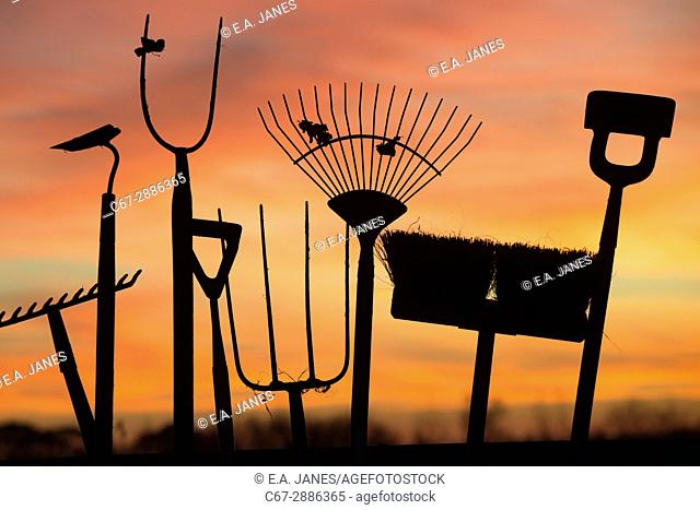 Garden tools at sunset in winter