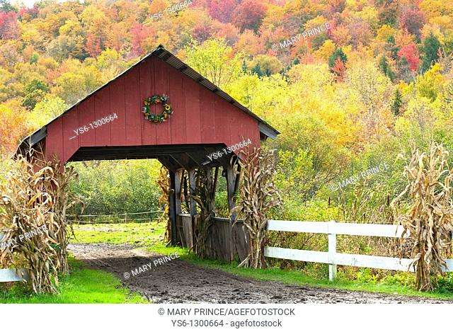 Red Covered Bridge in Autumn with Corn Stalks and Foliage, Stowe, Vermont, USA