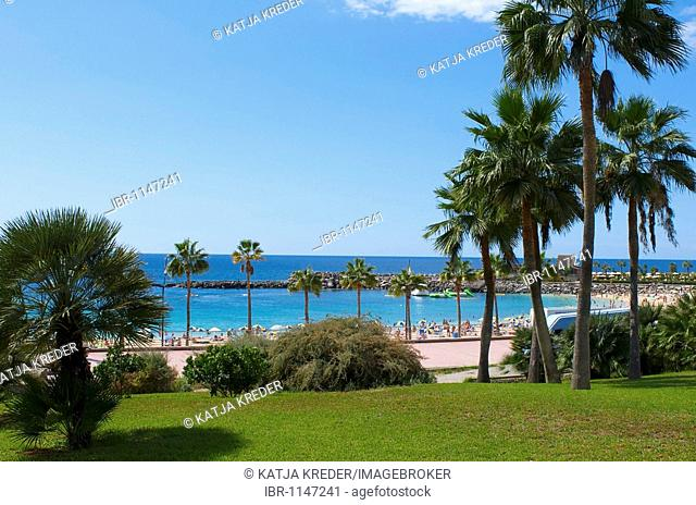 Playa Amadores Beach in Puerto Rico, Grand Canary, Canary Islands, Spain