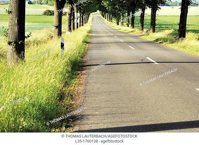 typical German country road, Lower Saxony, near Goslar