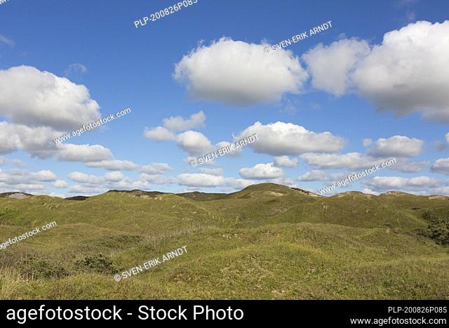 Cumulus clouds over the Dunes of Texel National Park / Nationaal Park Duinen van Texel on the North-Holland island of Texel in the Netherlands